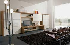 Modern storage furniture for living room
