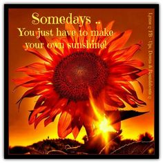 Somedays .. You just have to make your own sunshine!  --  Lynne Taylor