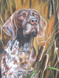 German shorthaired pointer gsp art print CANVAS by TheDogLover