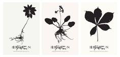 Den Grafiske Planteskole - Danish Designers' Prints – unikke grafiske plakater af udvalgte designere