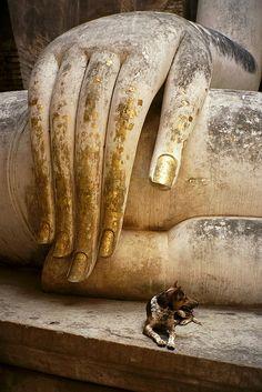 J'aime les lignes, les textures, les doigts tachés de feuille d'or... Buddha at Sukhothai, with Dog by becklectic