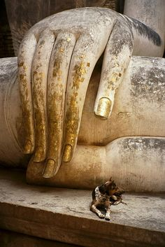 Buddha at Sukhothai, with Dog by becklectic
