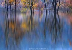 Autumn reflection by Aleš Komovec on 500px