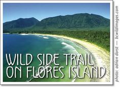 hike the wild side trail on flores island