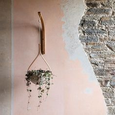 The Morvah Wall Hanging Plante Wall Hanging, Wall, Solid Oak, Bedroom Inspirations, Hanging Planters, Hanging, Spring Bedroom, Hanging Plants, Tom Raffield