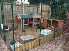 Omlet's Outdoor Rabbit Run is a large, secure rabbit enclosure that will look great in your garden. This rabbit run will give your pets lot of space for exercise. Rabbit Shed, Rabbit Life, Pet Rabbit, Outdoor Rabbit Run, Outdoor Rabbit Hutch, Diy Bunny Cage, Bunny Cages, Rata Dumbo, Rabbit Habitat