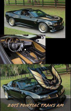 2015 Pontiac Firebird Trans Am