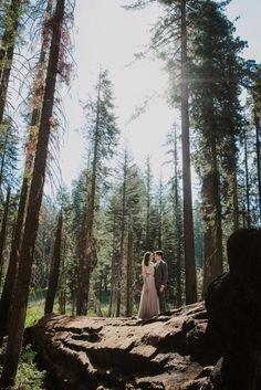 Julia and Jeffrey's Magical Sequoia National Park Picnic Wedding