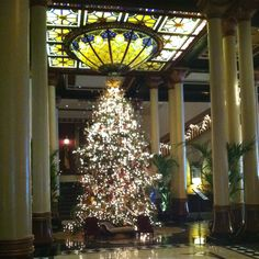 gorgeous christmas tree at the driskill hotel in austin tx