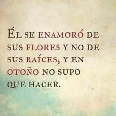 Él se enamoró... #amor #sentimientos #otoño