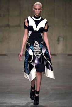 Peter Pilotto Fall 2013 Ready-to-Wear Fashion Show - Juliana Schurig