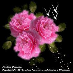imagines de flores para mi bebe | SCRAPS PARA ORKUT, Recados para Orkut, Mensagens para Orkut no ...