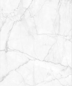 This luxe removable marble wallpaper is irresistibly lavish. Its distinctive swirls & veins add a visual texture that contrasts with its smooth finish. Bathroom Wallpaper Trends, Tile Wallpaper, Luxury Wallpaper, Wallpaper Samples, Bathroom Wallpaper Marble, Herringbone Wallpaper, Plant Wallpaper, Wallpaper Roll, Designer Wallpaper
