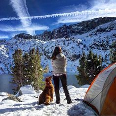 How many of you have camped in the snow? What tips do you have for us! #campingwithdogs  @thegoldenaspen