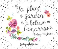 To plant a garden is to believe in tomorrow                                                                                                                                                     More