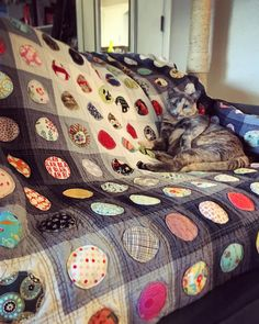 Spot the cat. #catslovequilts #quilt #onthebubblequilt
