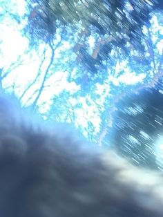 Blue and blur.