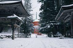 "Mt.Koya - ©YUJI HIRAI  <a href=""http://yujihirai.com"">Portfolio</a> | <a href=""https://instagram.com/yuji87/"">Instagram</a> | <a href=""https://www.facebook.com/yujihirai.photography/"">Facebook</a> | <a href=""http://reco-photo.com/film-photo-exhibition"">RECO</a>"