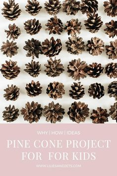 Toddler Crafts, Crafts For Kids, Easy Projects, Craft Projects, Hiking With Kids, Picture Holders, Pine Cone Crafts, Pinecone, Creative Kids