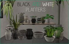 The Sims 2 | Riekus13: Black & White Planters for buggybooz planters repositoried by shastakiss