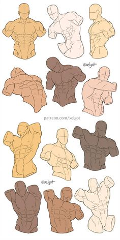 Male torso studies by Xelgot on DeviantArtYou can find Male torso and more on our website.Male torso studies by Xelgot on DeviantArt Body Reference Drawing, Guy Drawing, Art Reference Poses, Drawing Poses, Manga Drawing, Drawing People, Male Figure Drawing, Hand Reference, Drawing Tips