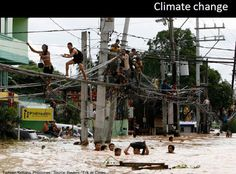 just come to an Idea to show the flood happening in the Philippines (my beloved country) with the images of my friends swimming in the beach. Flood in the philippines Funny Animal Pictures, Best Funny Pictures, Funny Photos, Pictures Online, World Pictures, Travel Humor, Funny Travel, Photos Of The Week, Live Long