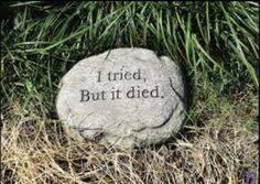 Funny garden stone for dead plants. Organic Gardening, Gardening Tips, Tree Pruning, Garden Whimsy, Garden Yard Ideas, Garden Quotes, Garden Signs, Funny Signs, Dream Garden