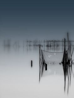 Clear focal point, separation through depth of field, open space, mixed type of lines, subdued colours, cool and peaceful, shapes and forms, grey tones, repetition,  reflection, rhythmic.