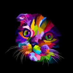 Find Scottish Fold Cats Head Colorful Dark stock images in HD and millions of other royalty-free stock photos, illustrations and vectors in the Shutterstock collection. Thousands of new, high-quality pictures added every day. Colorful Animal Paintings, Colorful Animals, Tableau Pop Art, Cat Scottish Fold, Cat Posters, Cat Colors, Arte Pop, Cat Drawing, Cat Art