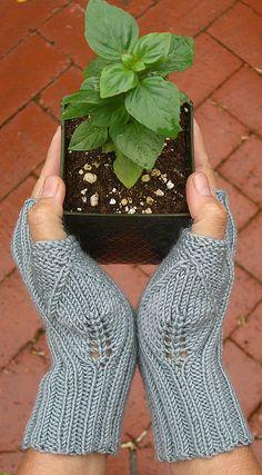 [knit fingerless lace]