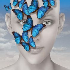 Blue butterflies – Igor Morski Gallery