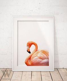 Flamingo Print, Tropical Wall Art, Flamingo photography, Printable Flamingo Poster, Beach Decor, Animal Art Print, Large Print Art