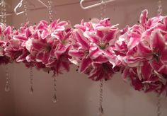 stargazer lily wedding bouquets | DIY Stargazer Lily & Orchid Pomanders : wedding ceremony diy flowers ...