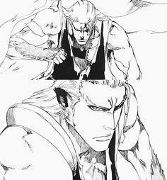 Komamura in Bleach 556. :D