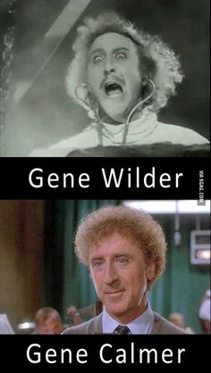 Gene wilder aka willy wonka meme guy