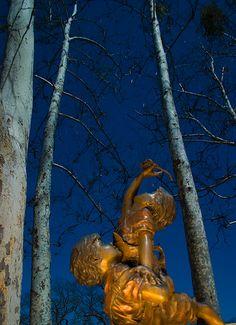 Neverland by Jonathan Haeber