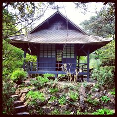 Tea House, Japanese Garden
