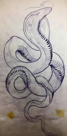 Best Ideas Tattoo Snake Cobra Art tattoo tattoo tattoo tattoo tattoo tattoo tattoo ideas designs ideas ideas in memory of ideas unique.diy tattoo permanent old school sketches tattoos tattoo Snake Sketch, Snake Drawing, Snake Art, Drawing Drawing, Drawing Tips, Tattoo Snake, Tattoo Henna, Lion Tattoo, Tattoo Art