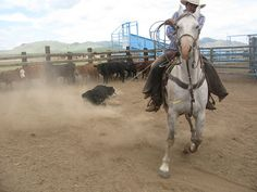 Fuerza y experiencia / Power and expertice, Chihuahua, Mexico by valencho, via Flickr