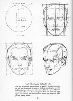 Drawing the Heads and Hands by Andrew Loomis, Plate 19 Face Drawing Reference, Anatomy Reference, Portrait Sketches, Drawing Sketches, Drawings, Drawing Heads, Painting & Drawing, Drawing Lessons, Drawing Techniques