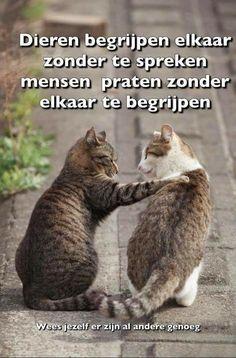 Dieren begrijpen elkaar zonder te spreken ...