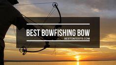 Best Bowfishing Bow 2017