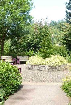 باغ خاطره پورتلند/ عکس از برین بیان سان