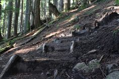 The BCMC Trail is east of the Grouse Grind in North Vancouver and starts from the base of the mountain, climbs up the steep slopes, and ends at the chalet at the top. Hiking Places, Wooden Steps, Grouse, North Vancouver, British Columbia, City Photo, Places To Go, Trail, Baden Powell