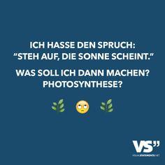 """Ich hasse den Spruch: """"Steh auf, die Sonne scheint."""" Was soll ich dann machen? Photosynthese?"""