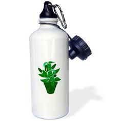 3dRose Pot with green themed plant, Sports Water Bottle, 21oz