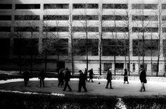 Photo by Jonathan Castellino from the Torontoist Flickr Pool