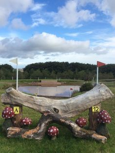 Horse Barn Plans, Horse Barns, Cross Country Jumps, Country Fences, Horse Exercises, Types Of Horses, Horse Property, Dream Barn, Show Jumping