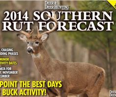 Find the rut forecast for your state to find the best deer hunting times this season and maximize your success in the field.