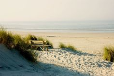 Strand duin Ameland